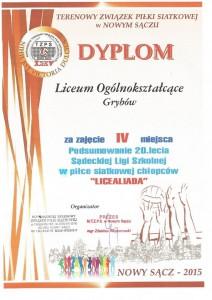 siatka_dyplom