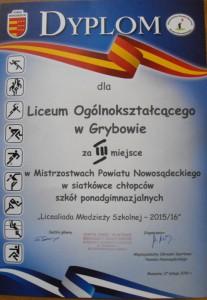 siatkowka1